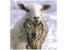 """""""Beware of the false prophets, who come to you in sheep's clothing, but inwardly are ravenous wolves."""" Matthew 7:15"""