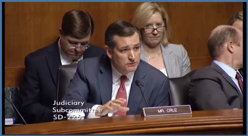 Ted Cruz during hearing on Islamic terrorism on Tuesday